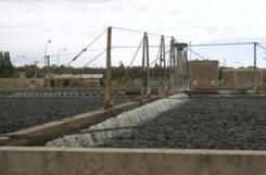 Harán planta para garantizar el servicio de agua
