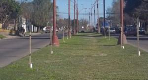 Pavimentación, Desagües y Obras Complementarias de Avenida Peñaloza -Santa Fe – $64 Millones