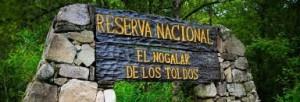 """Adjudicación – Centro Administrativo """"Los Toldos"""" – Parque Nacional BARITÚ  $12,8 Millones"""