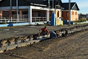 Pavimentación Casco Céntrico – TOLHUIN $28,7 Millones
