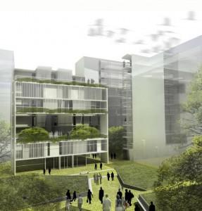 Se realizaron 4 licitaciones para las Viviendas Sociales en Villa Olimpica por $600 Millones