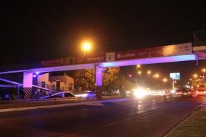 Sistema lumínico Camino Parque Centenario $ 10 Millones