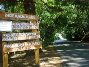 Area de Servicios – Parque Municipal Llao – Llao