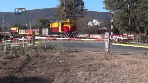 U$S 2.500 millones  para el tren de carga en Güemes