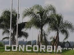 Infraestructura y seguridad para Concordia