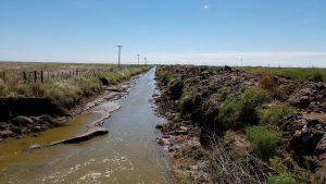 Obras Internas en la Cuenca de la Laguna La Picasa. 3 Ofertas $58 Millones
