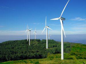 La concursada Ingeconser promete un parque eólico U$S 50 Millones