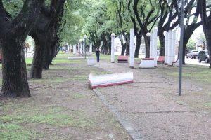 Rafaela: tres ofertas para la remodelación de canteros en avenida Ernesto Salva $ 7, 7 Millones