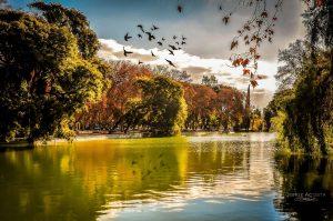 Ampliación Oeste Parque de Mayo en San Juan $103 Millones 8 ofertas