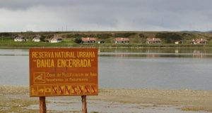 Cuatro miradores y una pasarela en la reserva natural Bahía Encerrada de Ushuaia 2 Ofertas $4 Millones