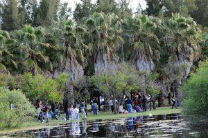 Rosario obras en el Bosque de los Constituyentes $120 Millones 6 Ofertas