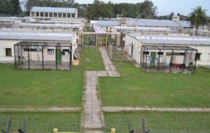 Ofertas para la construcción del Penal de San Cayetano $ 600 Millones