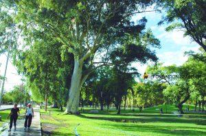 Licitaron el mantenimiento de la ampliación oeste del Parque de Mayo $ 9 Millones