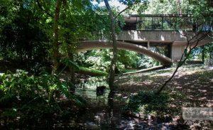 Ofertas para restaurar la Casa del Puente $ 50 Millones