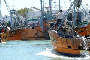 Cuatro interesados en ampliar el nuevo muelle pesquero de Rawson