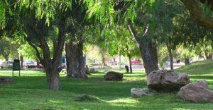 3 ofertas para el Parque Lineal del Oeste – Neuquén $ 16 Millones